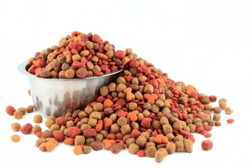 Подбор корма для собак