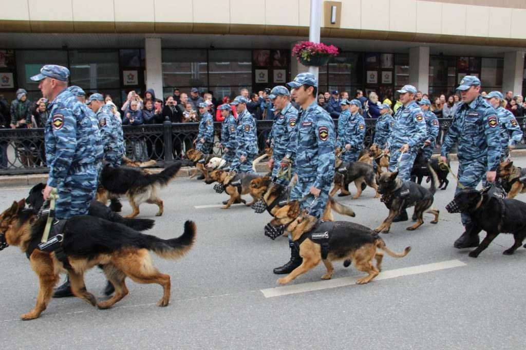 День кинологической службы МВД России